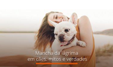 Mancha da lágrima em cães: mitos e verdades