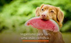 Veganismo para cães